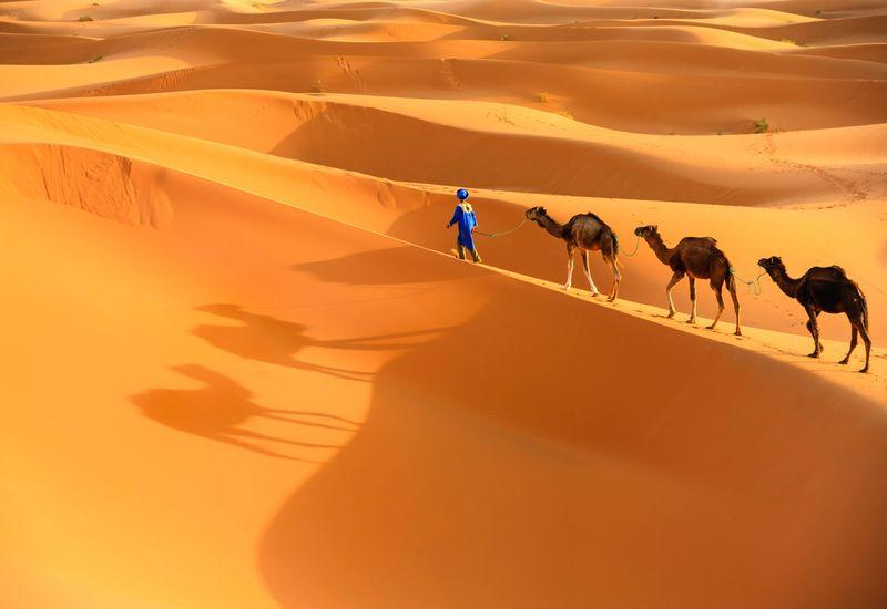 2 days from Fez to Merzouga desert