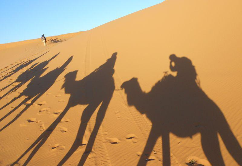 5 days from Fez to Marrakech via the desert